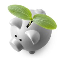 Piggy bank with new growth leaf